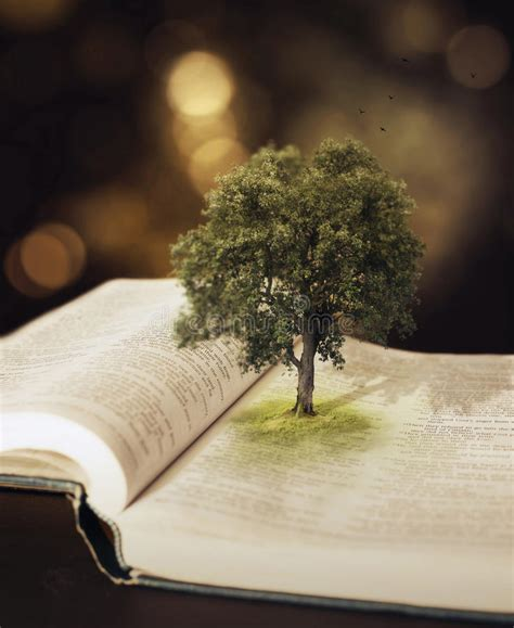 Tree in the Bible